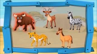Зебра, леопард и лошадь - Мультик про животных. Все серии подряд - Развивающие мультфильмы