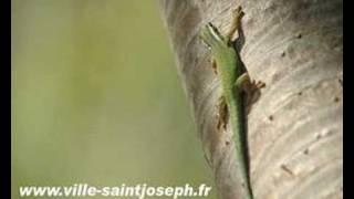 preview picture of video 'Présentation Saint-Joseph - Fon'