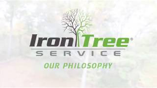 Iron Tree: Our Philosophy