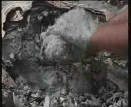 Sanberri von der Schuppenflechte
