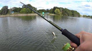 Рыбалка на красивом озере. Сломал Zetrix Azura. Рыбалка на спиннинг.