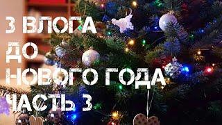 Три влога до Нового Года. Часть 3. Jekaterina Sap