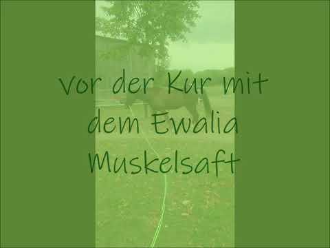Ewalia Muskelsaft 1 Liter