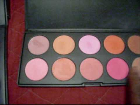 10 Color Blush Palette by Coastal Scents #3
