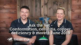 Ask the Vet - Conformation, cellulitis, copper deficiency and more! - June 2019