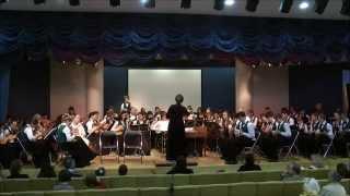 Концерт Оркестра Русских Народных Инструментов ДМШ им. В.В. Андреева 16 мая 2015