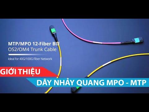 Dây nhảy quang MTP MPO 40G 100G