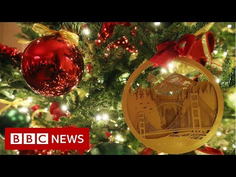 White House Christmas decorations unveiled – BBC News