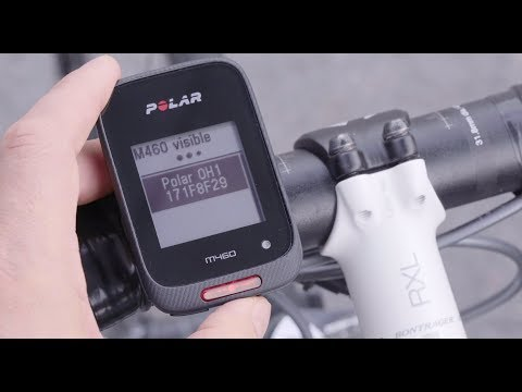 Polar OH1 (Cintura per la frequenza cardiaca (con modulo))