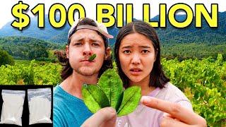 The Leaf that Turned into a Multi-Billion Dollar Drug (Coca)