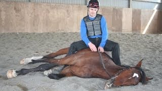 Fixing Problem Horses With The TAP Method - Horse Talk TV Series 3 - EP 2