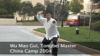preview picture of video 'Wu Mao Gui Tong Bei Form China Camp 2004 see www.susanamatthews.com'