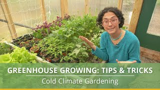 Greenhouse Growing Tips and Tricks