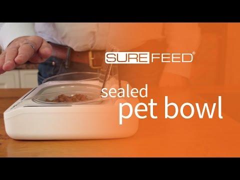 Using the Sealed Pet Bowl training mode