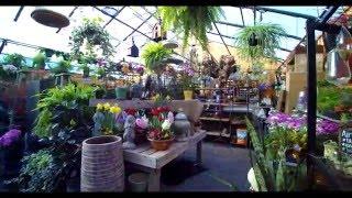 Reynolds Garden Shop Tour