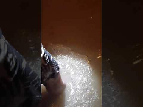 Palilula pod vodom posle nevremena u Nišu