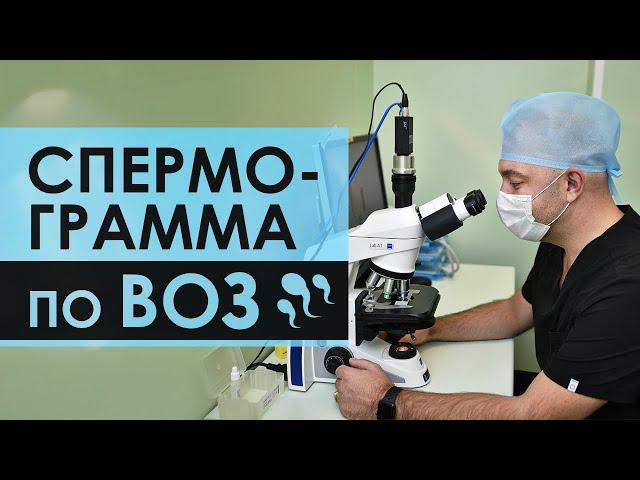 Video de pronunciación de сдавали en Ruso