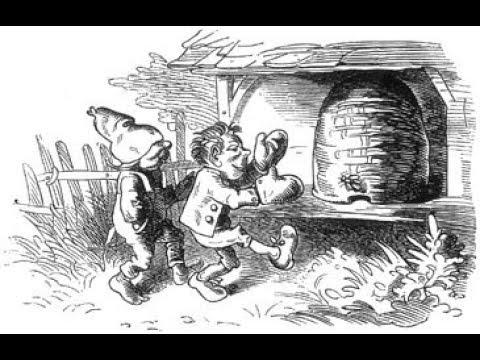 Die kleinen Honigdiebe, Bildergeschichte von Wilhelm Busch, Lesung vom Vorleser