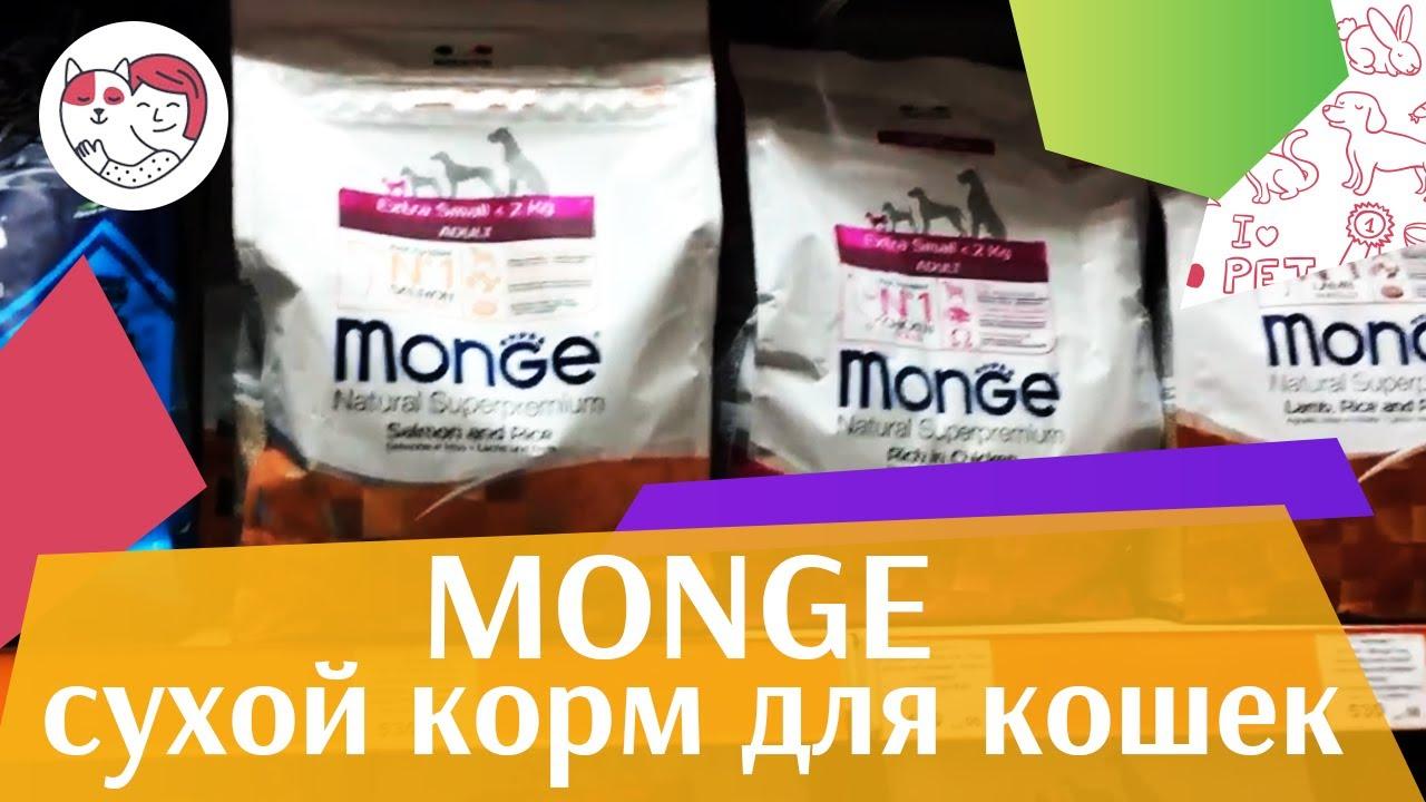 Monge сухой корм для кошек на ilikepet