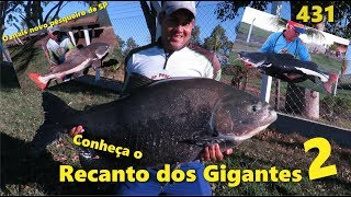 Conheça o Recanto dos Gigantes 2 - Fishingtur na TV 431
