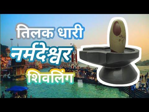 Tilak Narmadeshwar Shivling