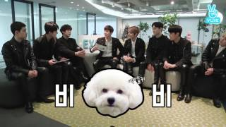 Download Video [EXO] EXO talked about shooting V LIVE with their pets: highlight MP3 3GP MP4