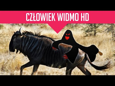 RowenaArgonianka's Video 160099332174 Oedad102SZM