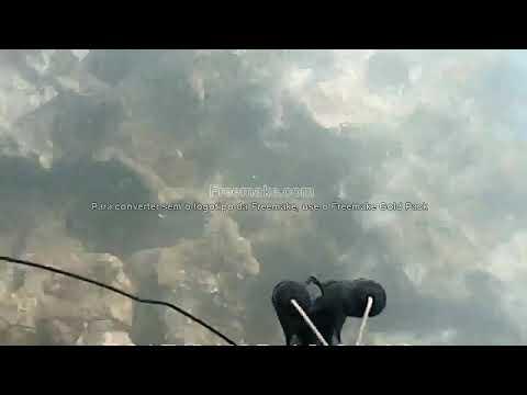Pesca sub em Aracruz es