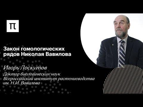 Закон гомологических рядов Николая Вавилова — Игорь Лоскутов
