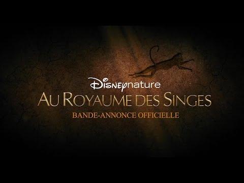Au Royaume Des Singes | Bande-Annonce VF | Disney BE