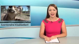 Szentendre MA / TV Szentendre / 2019.07.18.