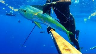 Carl's Guns The Désirade Part One Spearfishing