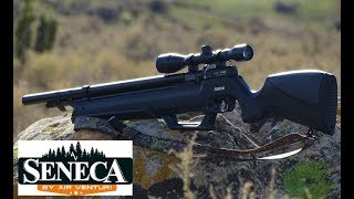Seneca Aspen Full Field Review