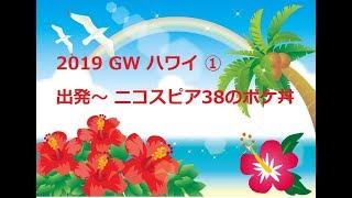2019 GW ハワイ ① 関空発 デルタ航空 レンタカーで向かう ニコスピア38のポケ丼
