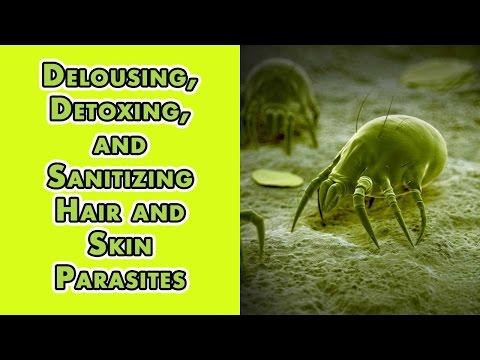 Battle alagang hayop laban sa parasites