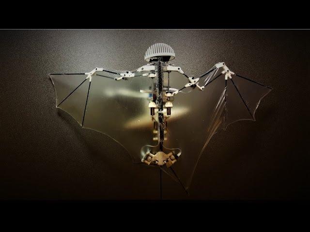 В Калифорнийском институте создан робот-летучая мышь