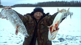 Рыбалка в калужской области думиничи