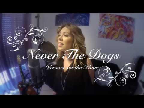 Never The Dogs Acoustic trio/quartetto Roma musiqua.it