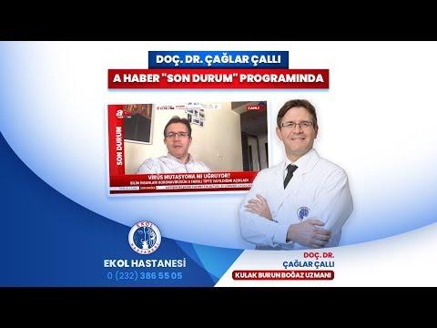 Doç. Dr. Çağlar Çallı, A Haber Son Durum Programında
