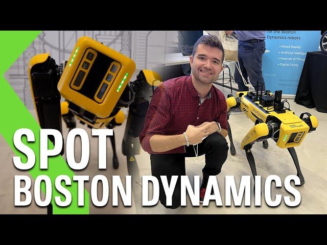 HEMOS ESTADO con el PERRO ROBOT de BOSTON DYNAMICS: ¡ASÍ FUNCIONA!