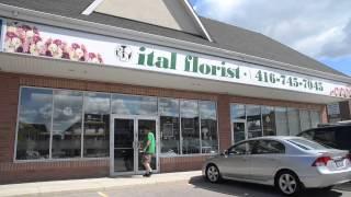 Ital Florist | Toronto Flower Delivery