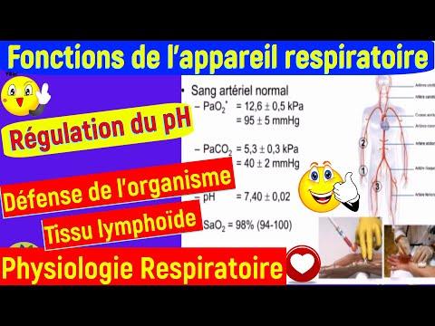 Lhypertension objectif de lécole