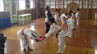 preview picture of video 'Martial Arts,Karate,Self Defense for children in Lawrence, Inwood, Woodmere, Far Rockaway,NY'