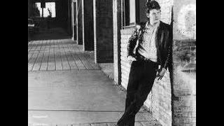 Steve Forbert  -  Perfect stranger