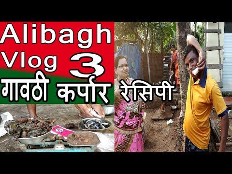 झाडावर चढण्याची मजा आणि टायगर/कर्पार रेसिपी   Gavti Karpaar Recipe   Alibagh Vlog 3