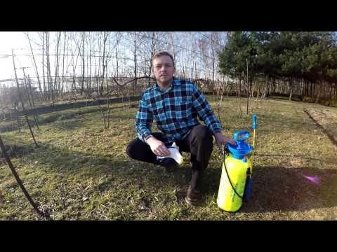 Kodowanie z alkoholizmem metodą Zaporoże Dovzhenko