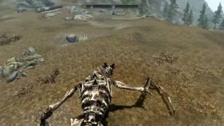 Skyrim: Превращение в дракона