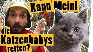 """Challenge: Rette die Kätzchen! Schafft Meini es?    """"Das schaffst du nie!"""""""