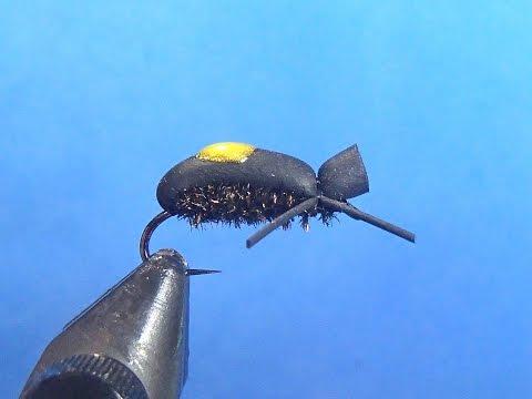 Rubber Leg Beetle