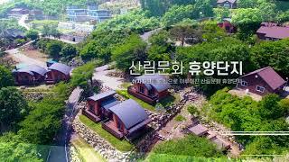 [용문산자연휴양림] 홍보 영상